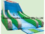 Ce Adorable Large Outdoor Inflatable Slide
