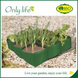 Onlylife Eco-Friwndly Homegrown Grow Bag Garden Plant Bag