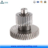 Stainless Steel Worm Drive Gear Brass Transmission Spur Gear