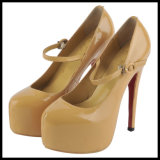 2014 Fashion High Heel Ladies Dress Shoes Hcy02-658