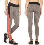 Customized OEM Casual Skinny Hot Sale Sex Women Active Colorblock Leggings
