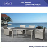 Garden Wicker Rattan Patio Hotel Home Office Outdoor Dining Table and Chair (J154)