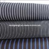 Cotton Yarn Dyed High Density Fine Stripe Fabric (LZ5597)