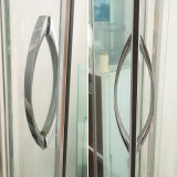 Fashion Design Stainless Steel Shower Room Handle, Stainless Steel Glass Door Handle (6303)