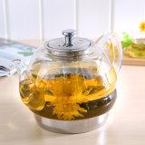 Heat Resistant Borosilicate Exotic Glass Teapot (HCG-1600)
