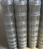 Pyramid of Hot Dipped Galvanized Used for Cattle Fencing