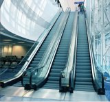 Commercial Escalator with 35 Degree 1000mm Step Width (XNFT-002)