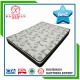 Dream Collection Pillow Top Continuous Spring Mattress