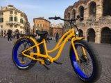 26′′ Hot Sell Beach Electric Bicycle with 8fun Motor Rseb506