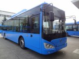 Sunlong 12m City Bus 41-60 Seats with Competitive Price (SLK6129AU)