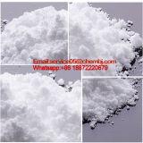 High Purity China Corticosteroids CAS: 125-10-0 Prednisone Acetate