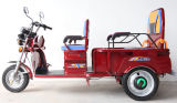 Hot Sell Cargo and Electric Passenager Tricycle