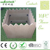 Contemporary Look WPC Flower Box Factory Price Wood Composite Box