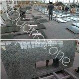 Solid Surface Jiangxi Green Granite Countertops / Kitchen Worktops