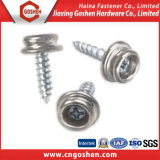 China Supplier High Performance Wader Wood Thread Self Tapping Screw