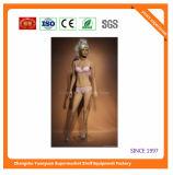 High Quality Fiberglass Mannequins Torso 9235