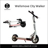 Popular City Personal Transportation Vehicles Scooter Dual Motors