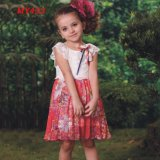 Cute Fashion Smocked Designer Short Mini Children Dresses for Girls