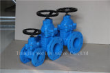 Worm Gear Ductile Iron Ggg40 Resilient Seated Gate Valve (Z45X-16Q)