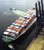 Consolidate Shipment From China to Long Beach, USA