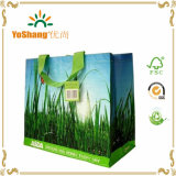 Free Sample Laminated PP Woven Cheap Promotion Shopping Bag
