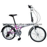 Folding Bicycle/Bike/Cycle for Sale (FD-005)