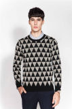 Winter Patterned Crew Neck Knit Men Sweater