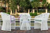 White Colour 3 PCS Rattan / Wicker Furniture Garden Outdoor Round Sofa Set