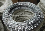 Bto-22 Galvanized Razor Wire, Cbt-65 Razor Wire