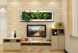 3D Novel Frame Wall Craft Backdrop