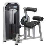 Multi Gym Fitness Equipment for Back Extension