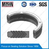 Es Series Hydraulic Cylinder Rod Seal/V Packing Seals/Chevron Seal