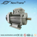AC Permanent-Manget Synchronous Burnout-Proof Motor 550W, 1500rpm