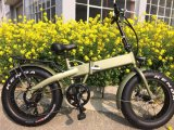 Very Hot and Good Quality Sale Foldable E-Bike with Fat Tire
