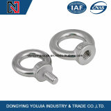 Carbon Steel Galvanized High Strength DIN582 Lifting Anchor Eye Bolt