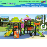 Theme Park Outdoor Equipment Playground Set on Stock (HC-5301)
