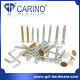 Furniture Screw (W620)