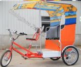Electric Rickshaw for India & Southeast Asia 750W (HDS750-01)