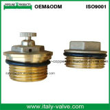 Customized Quality Brass Air Vent Valve (AV3068)