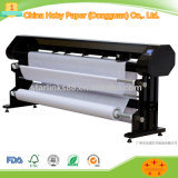 Roll Paper for Plotter in Garment Factory