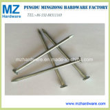 """Length 1""""-6"""" Polished Common Iron Wire Nail"""