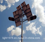 Double Lamp Solar Street Lighting Professional Design