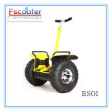 Electric Powered Two Wheeled Vehicle with CE