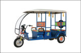 Tricycle for Sale in Philippines Electric Tricycle for Handicapped