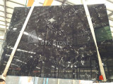 Ice Black Tulip Marble Slab for Building Material