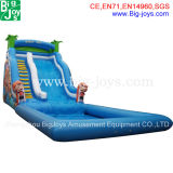 Inflatable Water Park Slide, Inflatable Slide with Pool (BJ-S04)