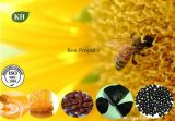 Bee Propolis, Bee Glue, Bee Propolis Extract, Purified Propolis Extract
