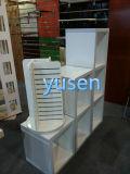 Modern Designs Customzied Size Display