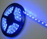 SMD LED Strip Light Hight Brightness LED