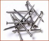 Hot Sale Concrete Nails From Chinese Professional Factory